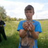 """Альбом: Екскурсія з природознавства в 5-му класі """"Різноманітність рослин рідного краю"""""""